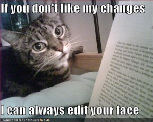 funny-cat-captions3